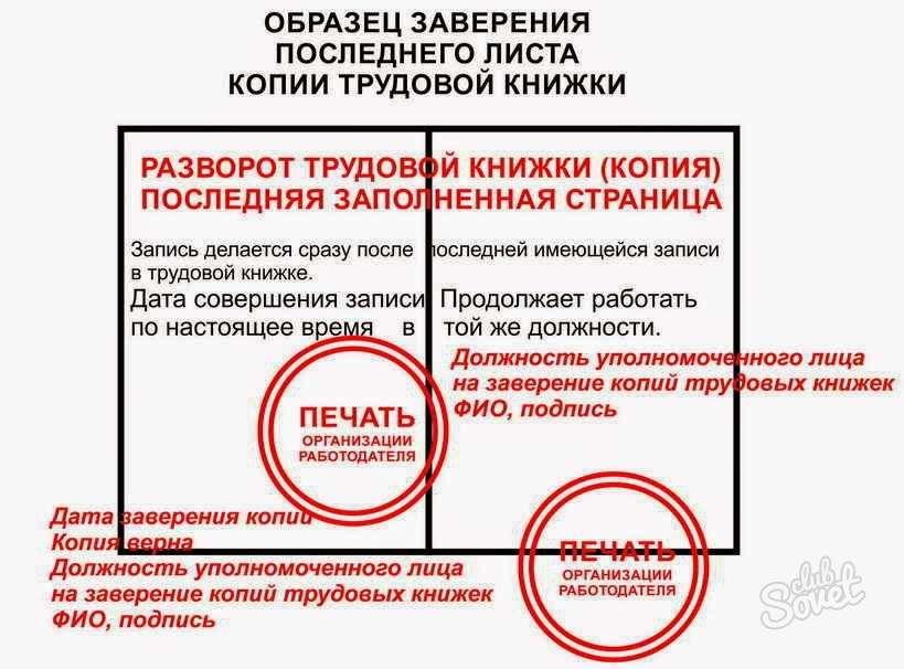 Копия Трудового Договора Заверенная Работодателем Образец - фото 2
